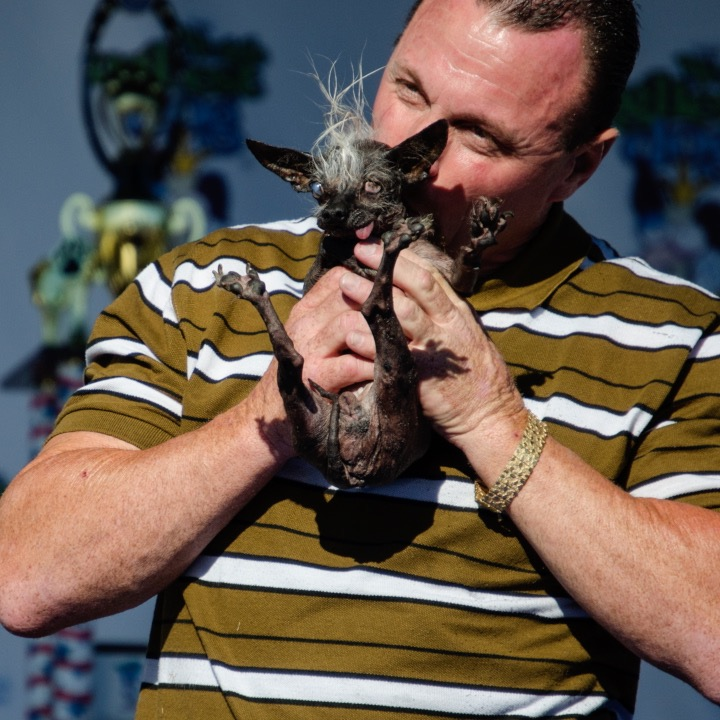 What's It Like To Attend The 'World's Ugliest Dog' Competition