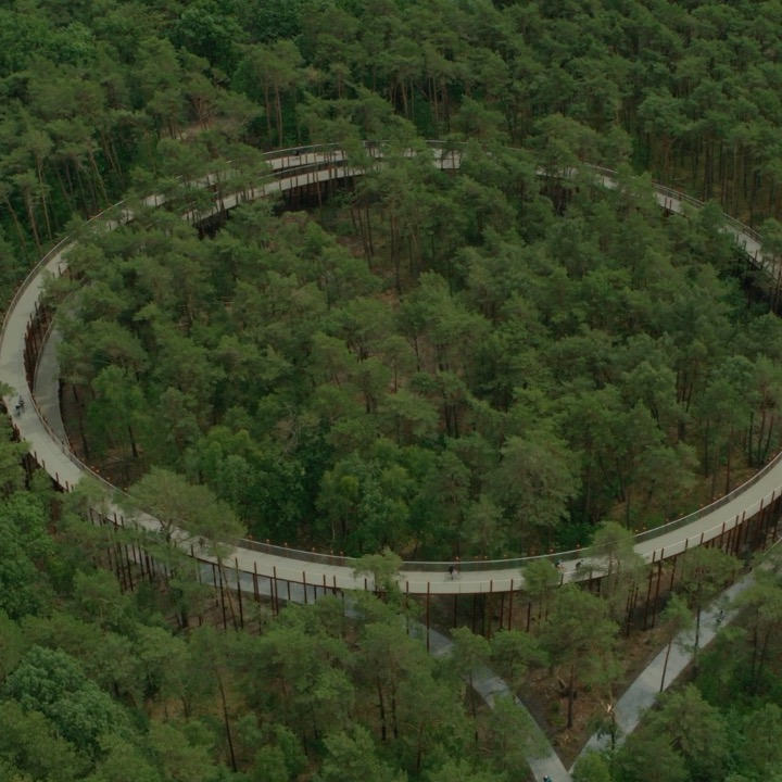 Belgium Just Opened A Divine Cycling Path Inside A Forest
