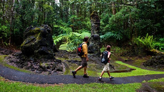 This Hawaii trail is a field of burned lava trees
