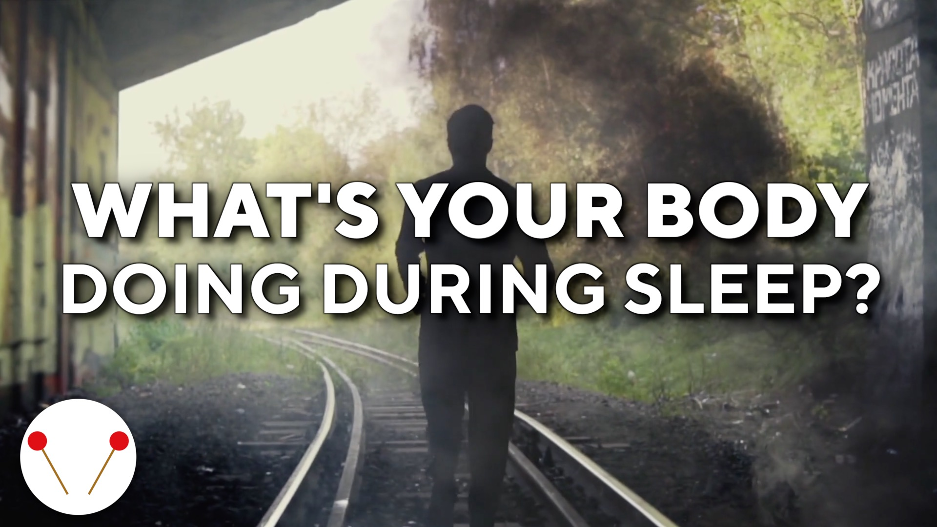 7 Amazing Things Your Body Does During Sleep