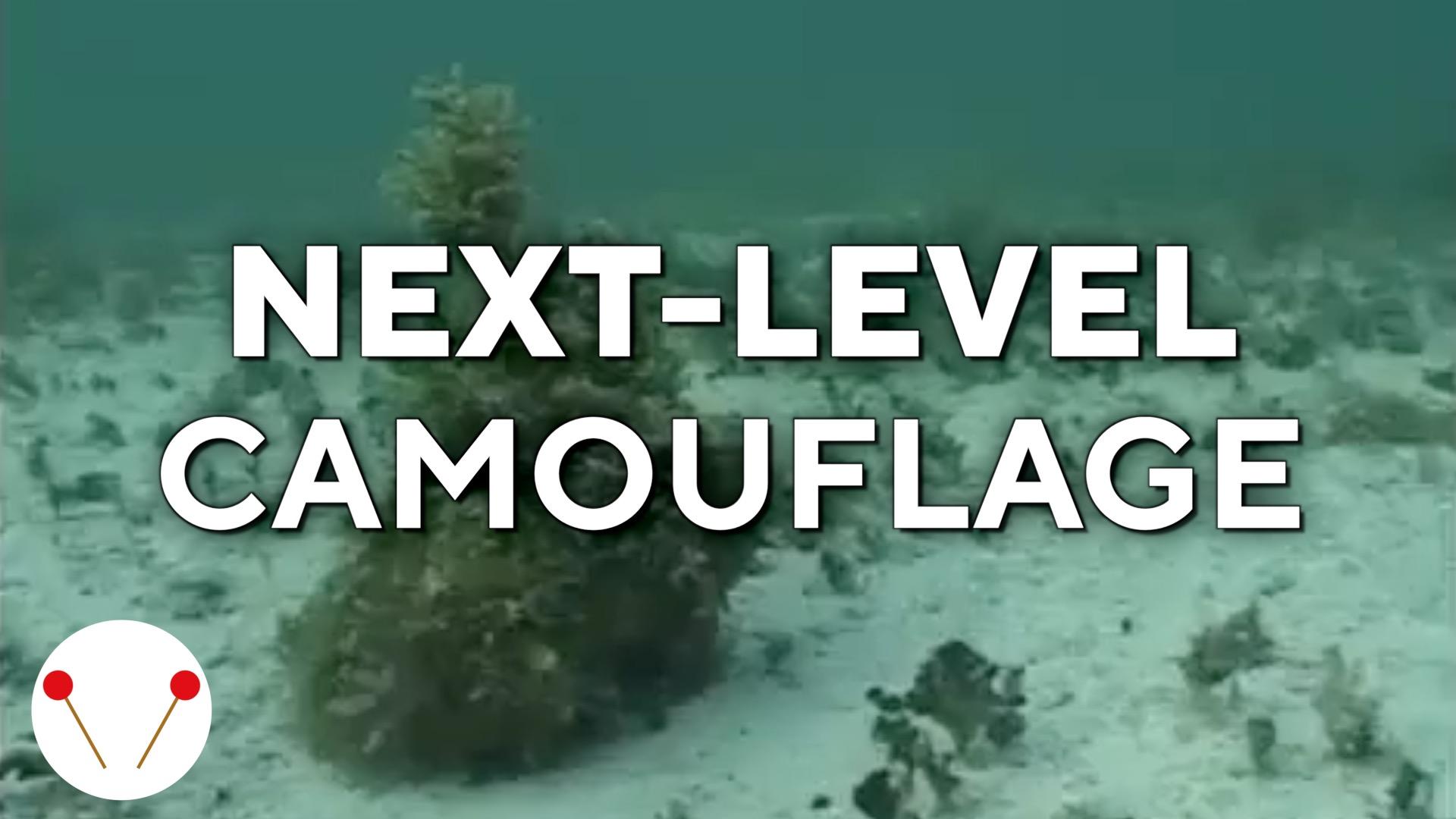 Next-level camouflage