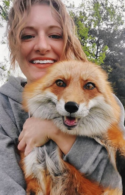 This friendly fox laughs like a human baby